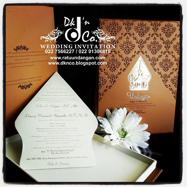 Traditional Elegan ( DKNCO-32 )